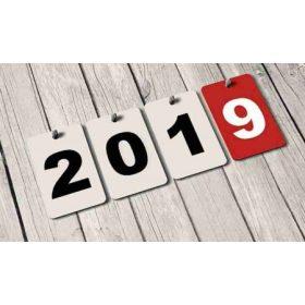2019-es Djeco Újdonságok